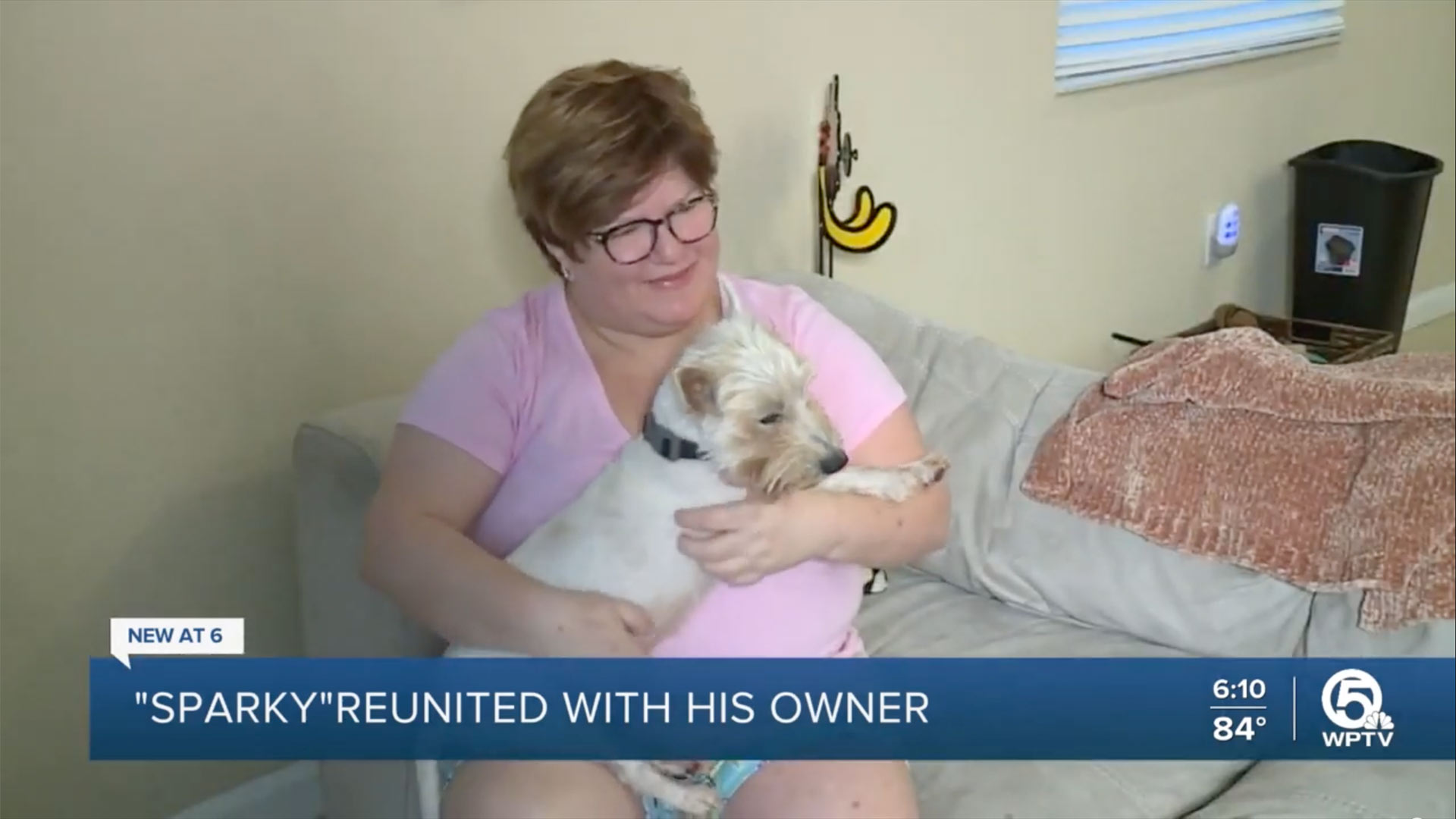 Florida woman spots missing dog on FB and is reunited