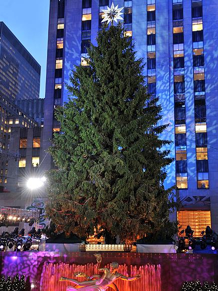 Arbol Rockefeller Center, Famosos Navidad