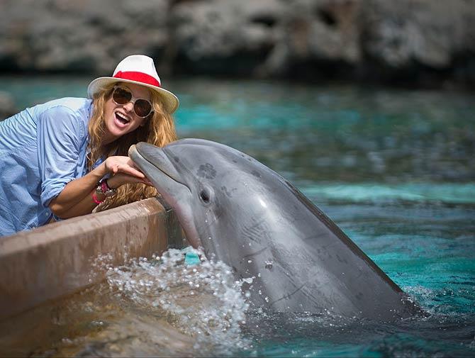 Paulina Rubio, SeaWorld