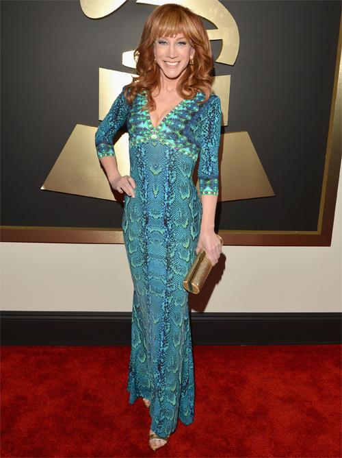 Premios Grammy 2014 ellas, Kathy Griffin