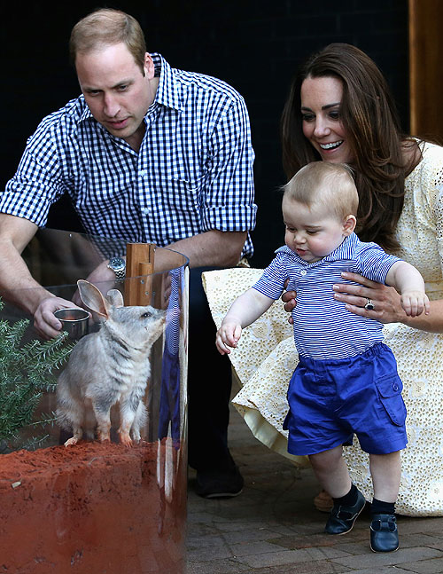 Príncipe William, Kate Middelton, Príncipe Geoge, Míralos