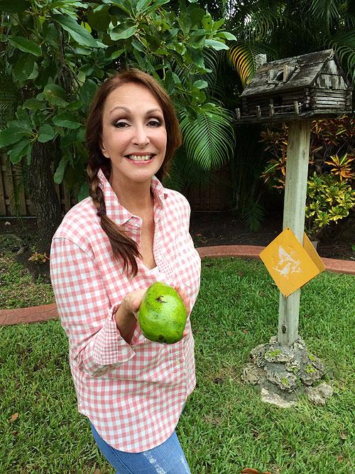 Lucy Pereda, Míralos