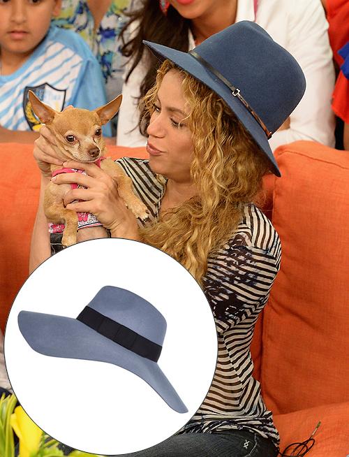 El look por menos, Shakira