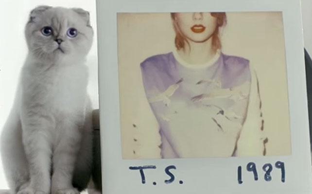 Olivia Benson, Taylor Swift