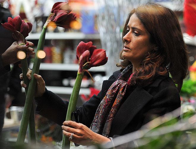 Salma Hayek, Míralos