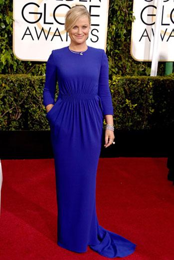 Golden Globes 2015 Ellas, Amy Poehler