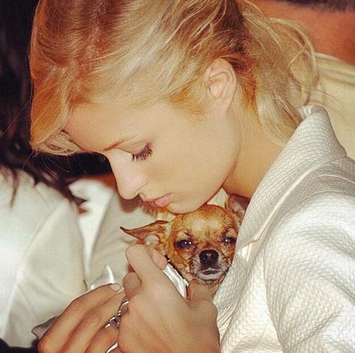Paris Hilton, Instagram
