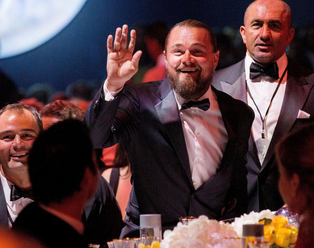 Míralos, Leonardo DiCaprio