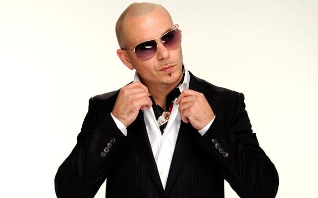 Pitbull para articulo
