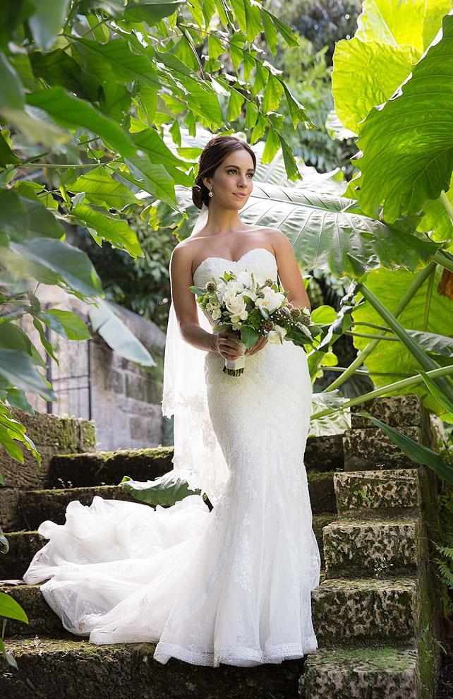 Mimi, boda