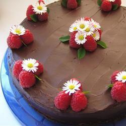 Pastel de chocolate con frambuesa