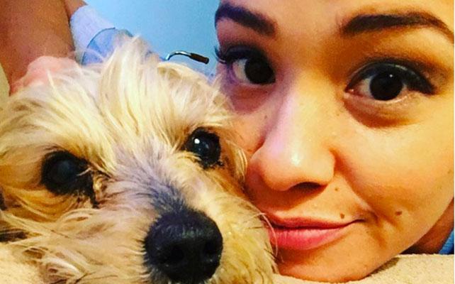 El perrito Ted ,Gina Rodríguez