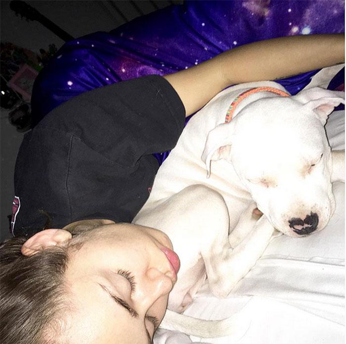 Perros, Miley Cyrus