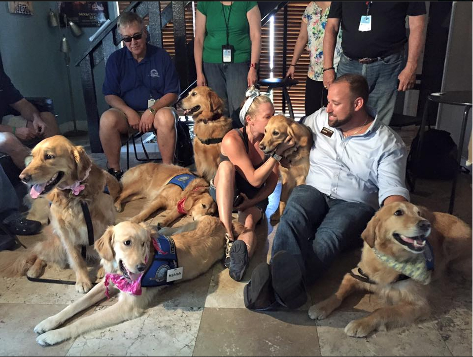 Comfort Dogs - for Orlando