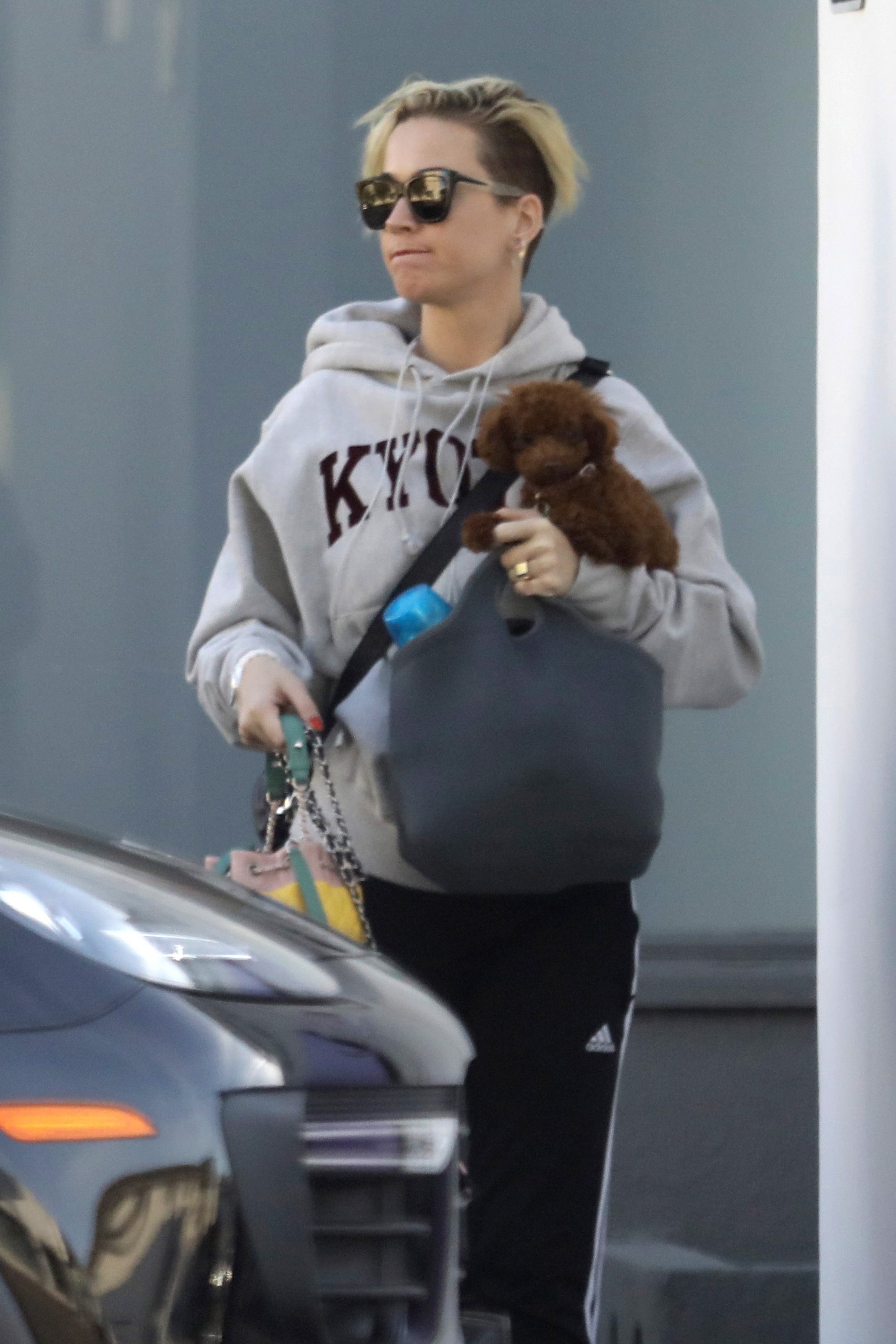 EXCLUSIVE Katy Perry Flashes Her New Pixie Cut As She Takes Her Lil Pups To Work
