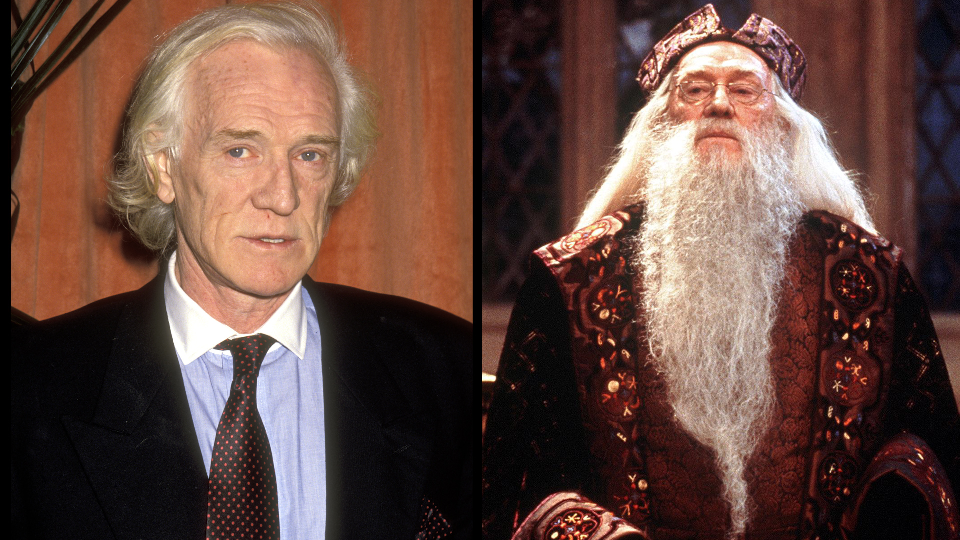 Richard Harris como Dumbledore