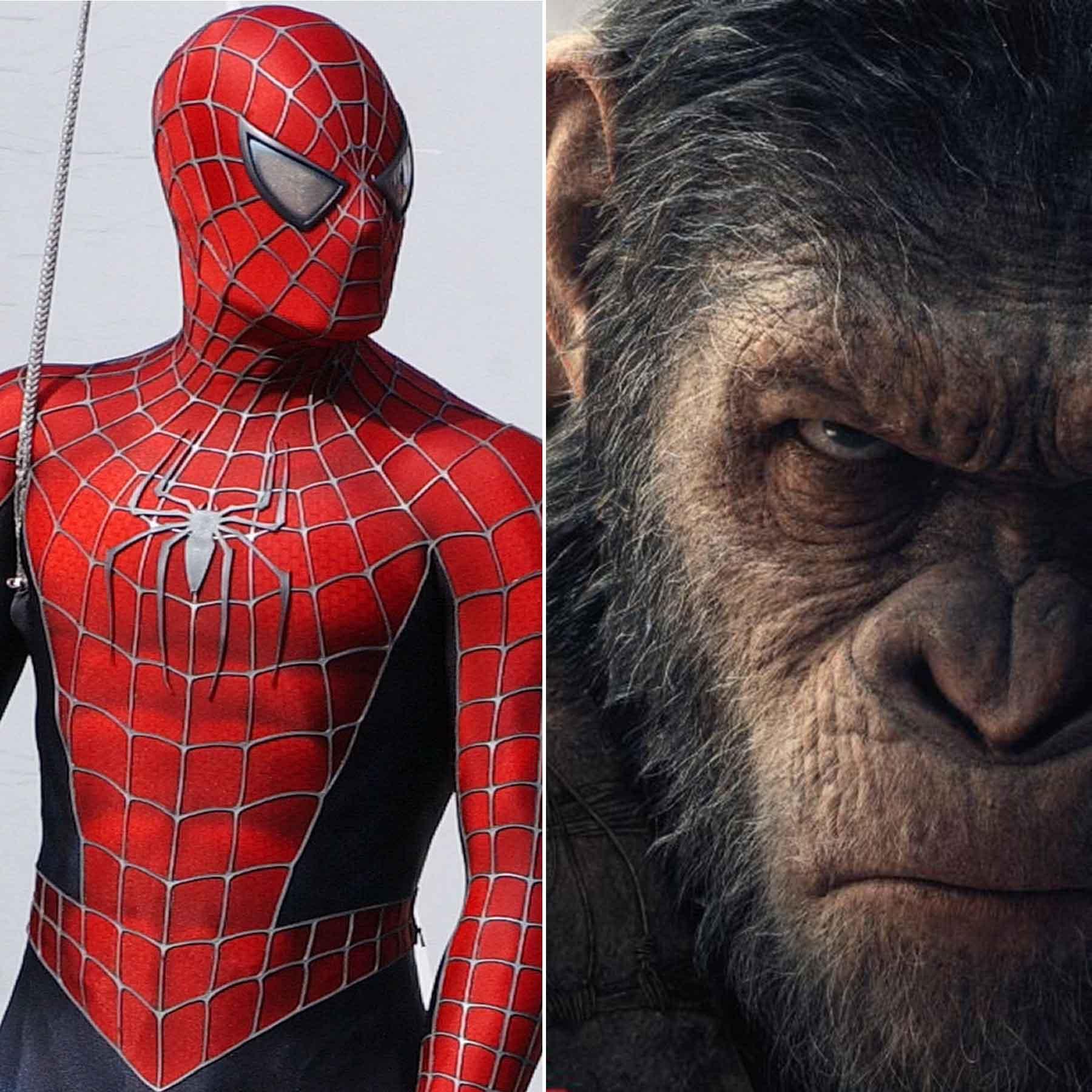 spiderman-ape.jpg