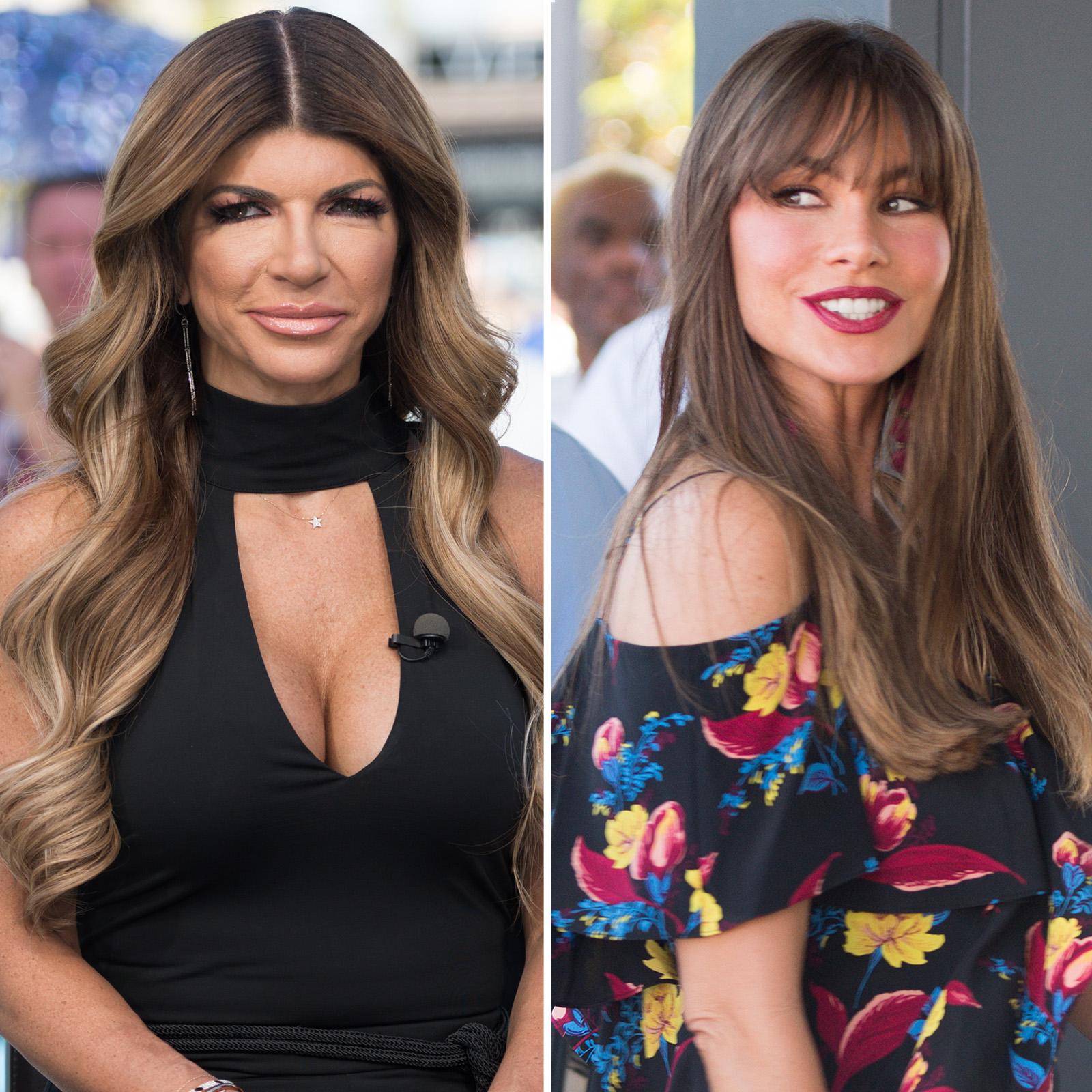 Teresa Guidice y Sofia Vergara