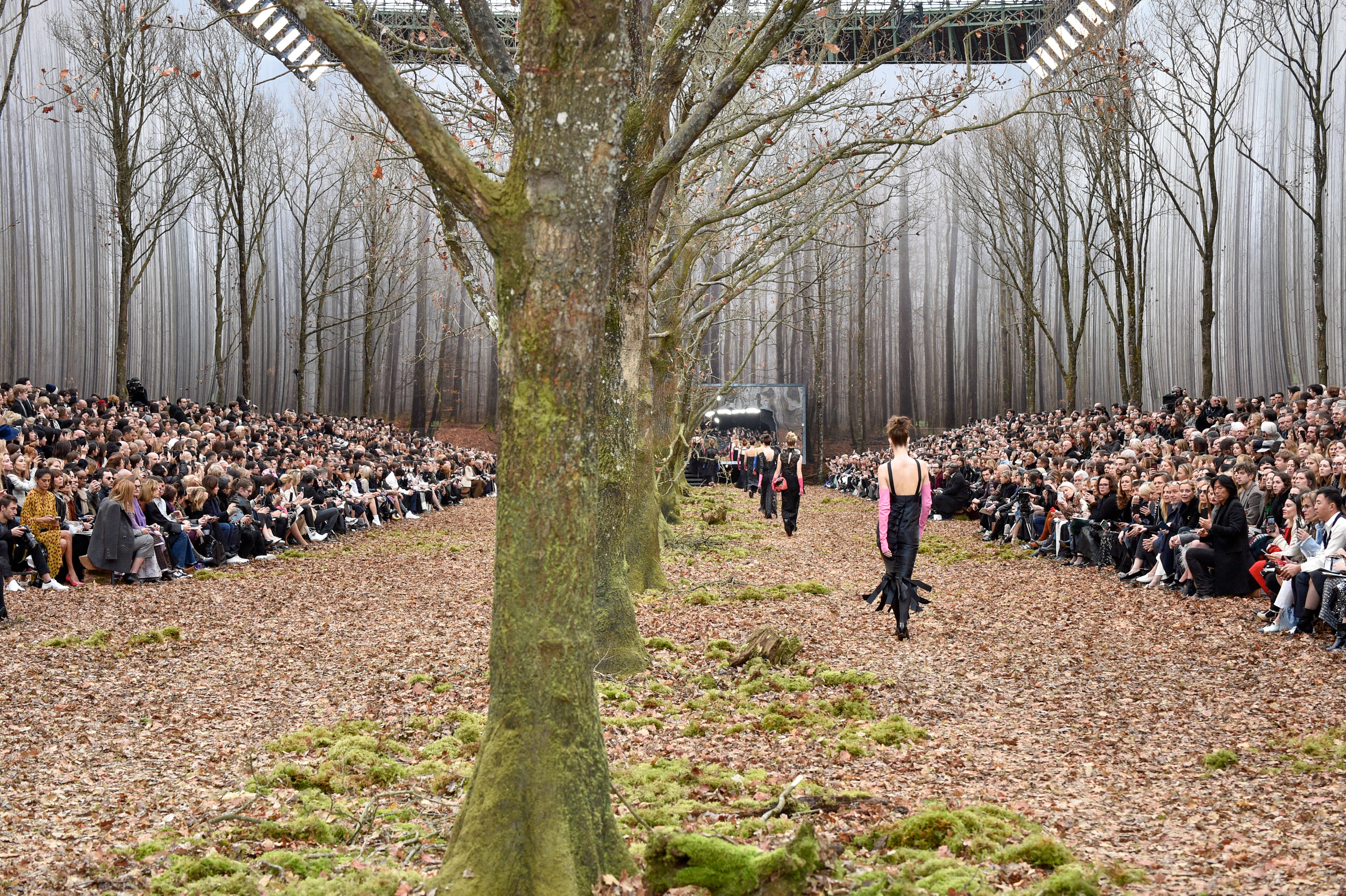 Chanel, desfile, paris, bosque