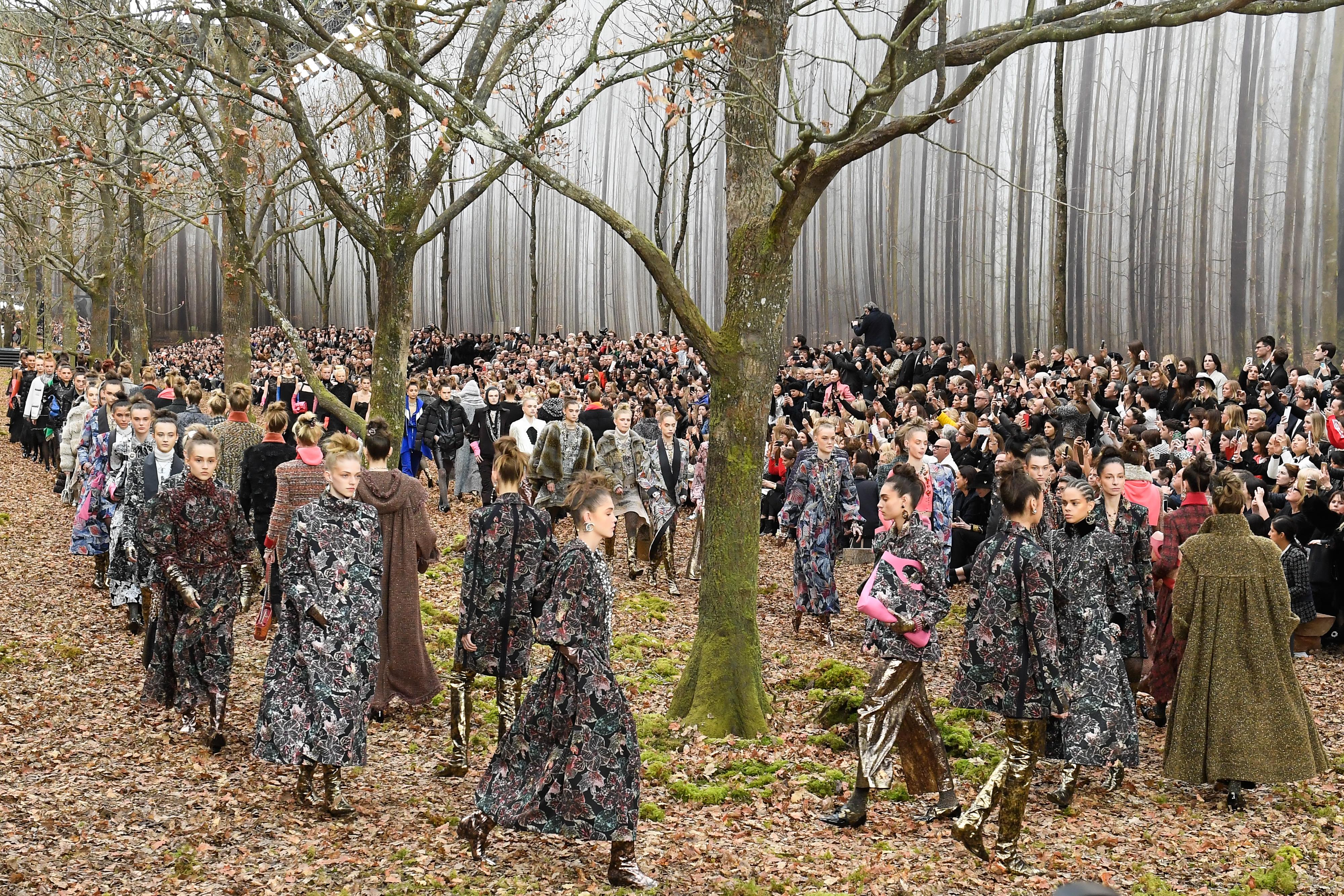 Chanel, desfile, paris, bosque
