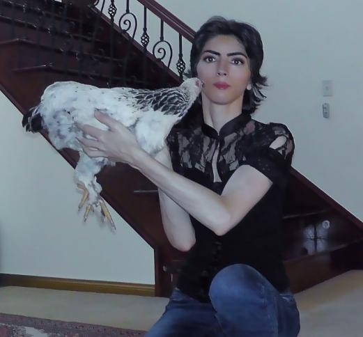 tiroteo youtube Nasim Najafi Aghdam4
