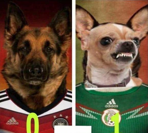 Memes Alemania vs. Mexico5