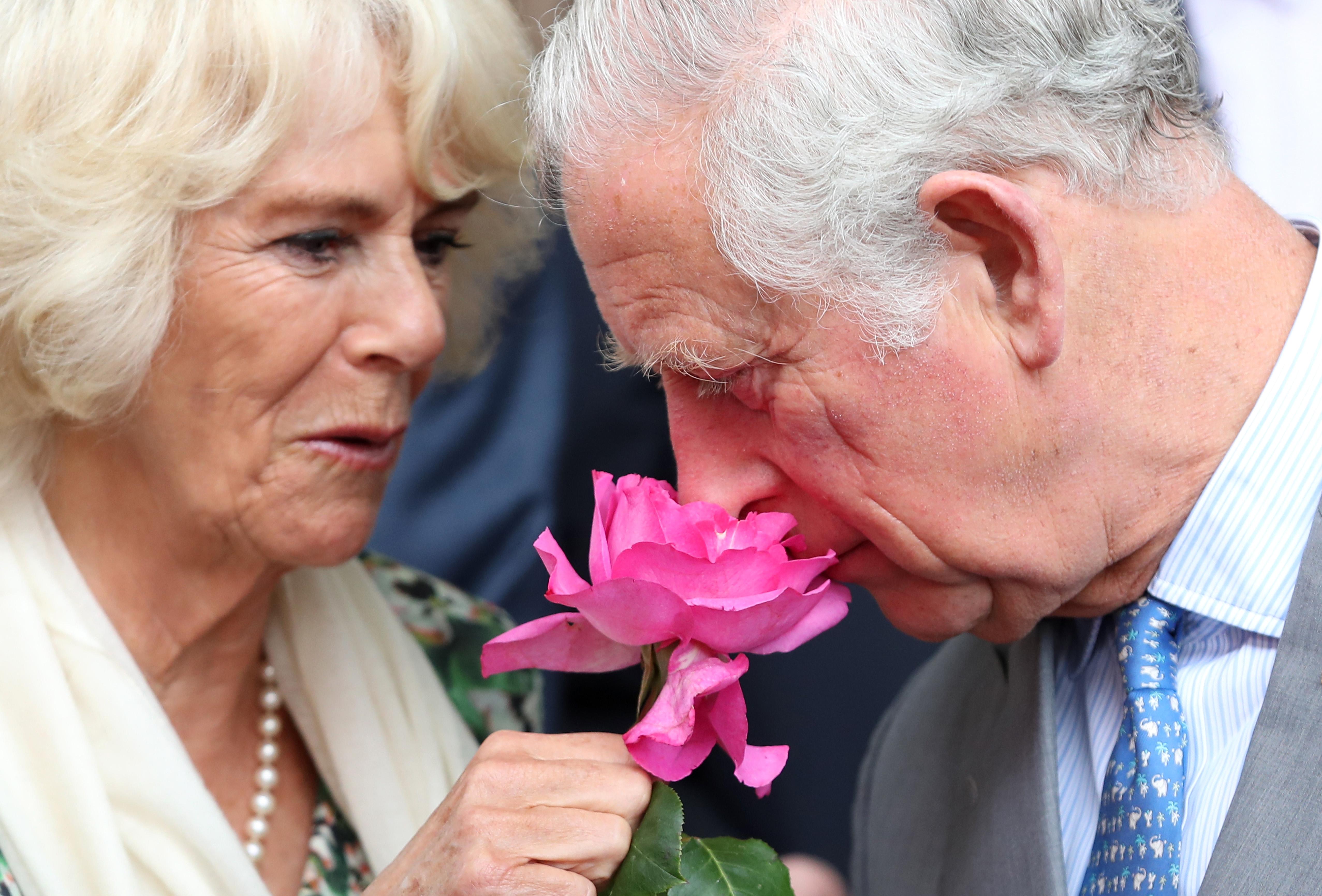 Camilla Parker Bowles Príncipe Carlos