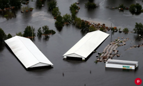 Floodwater from Hurricane Florence