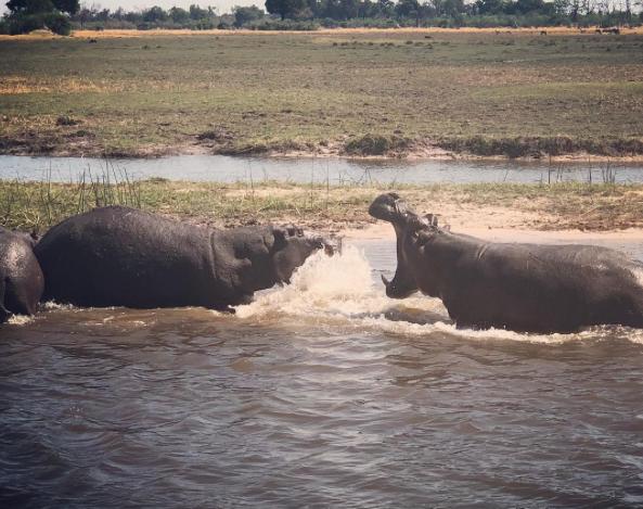 Galilea Montijo/ Botswana Africa Viaje a Africa octubre, 2018