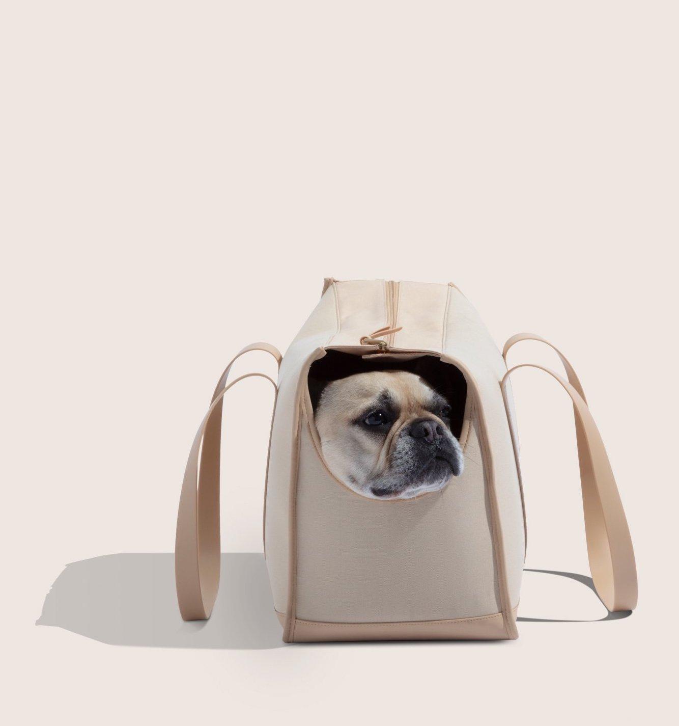 Bulto, perro