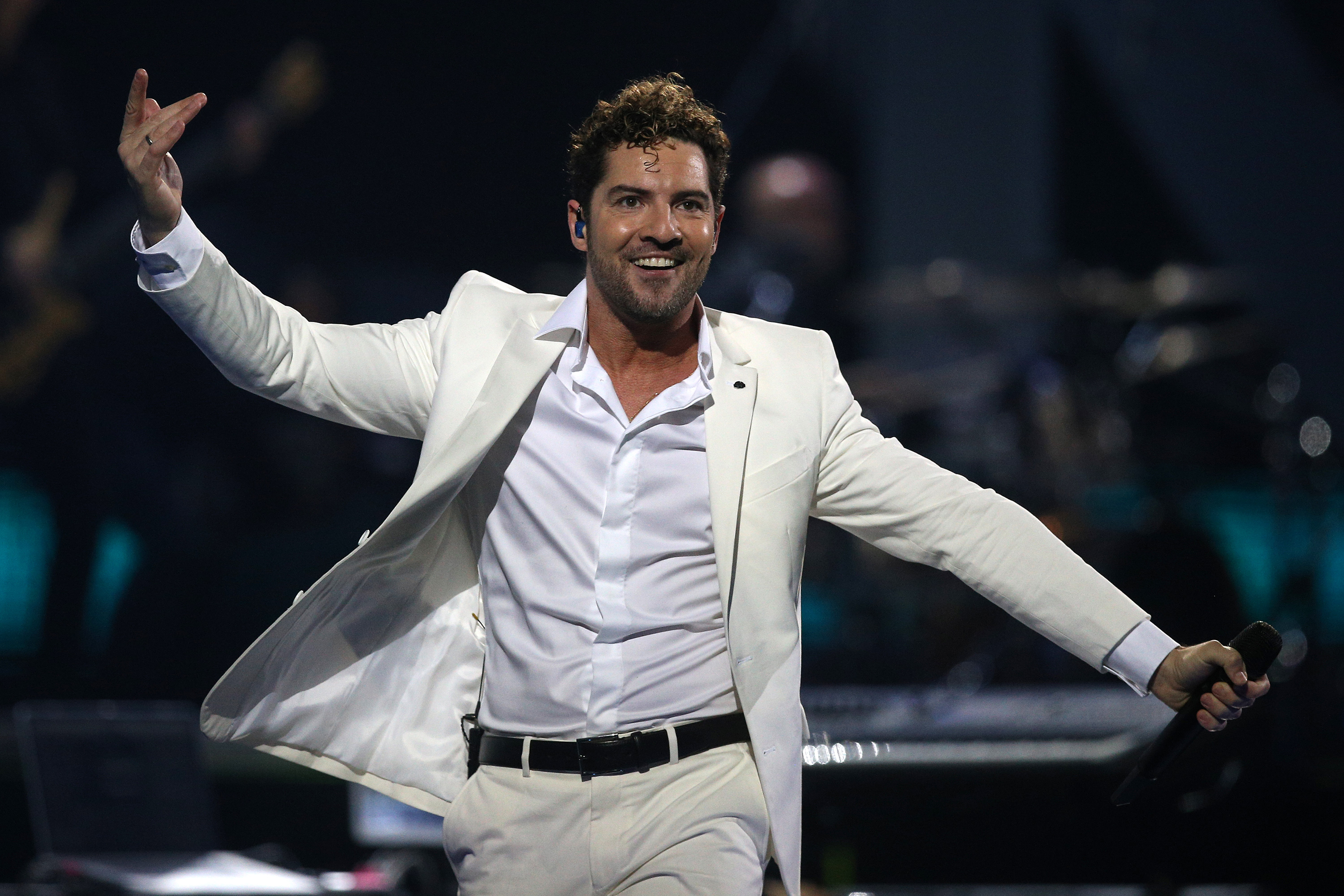 David Bisbal Viña del Mar