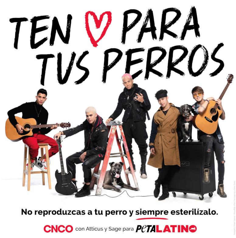 cnco-peta-latino.png