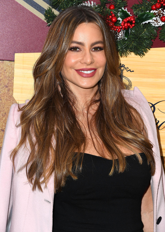 Sofía Vergara, actriz, estilo, look
