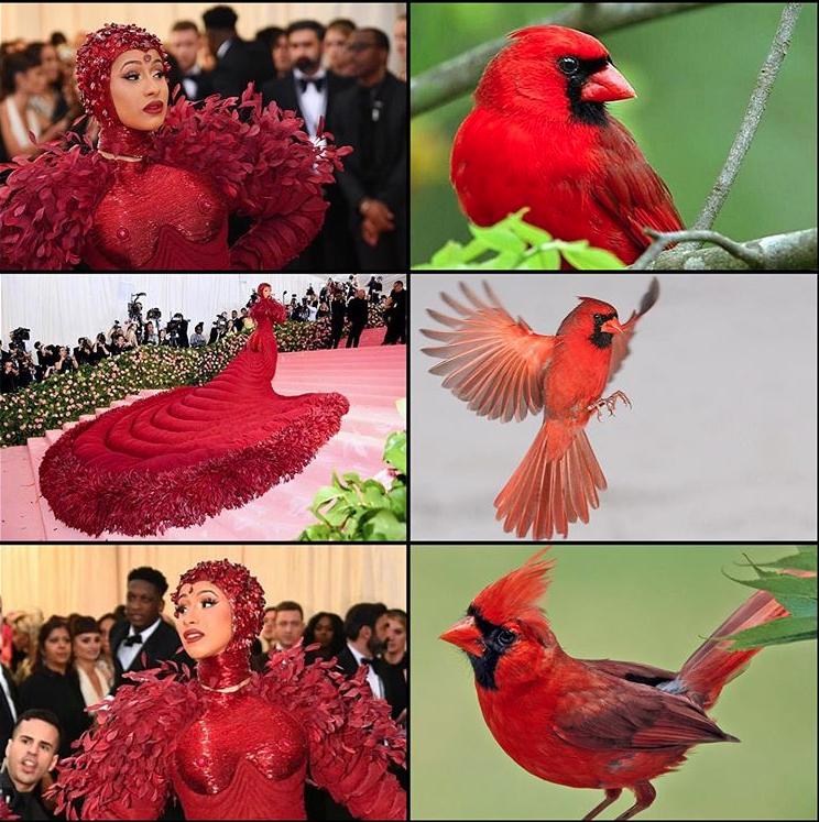 Memes del Mel Gala 20191
