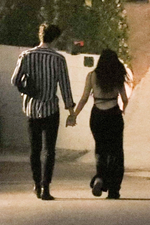 Shawn Mendes y Camila Cabello