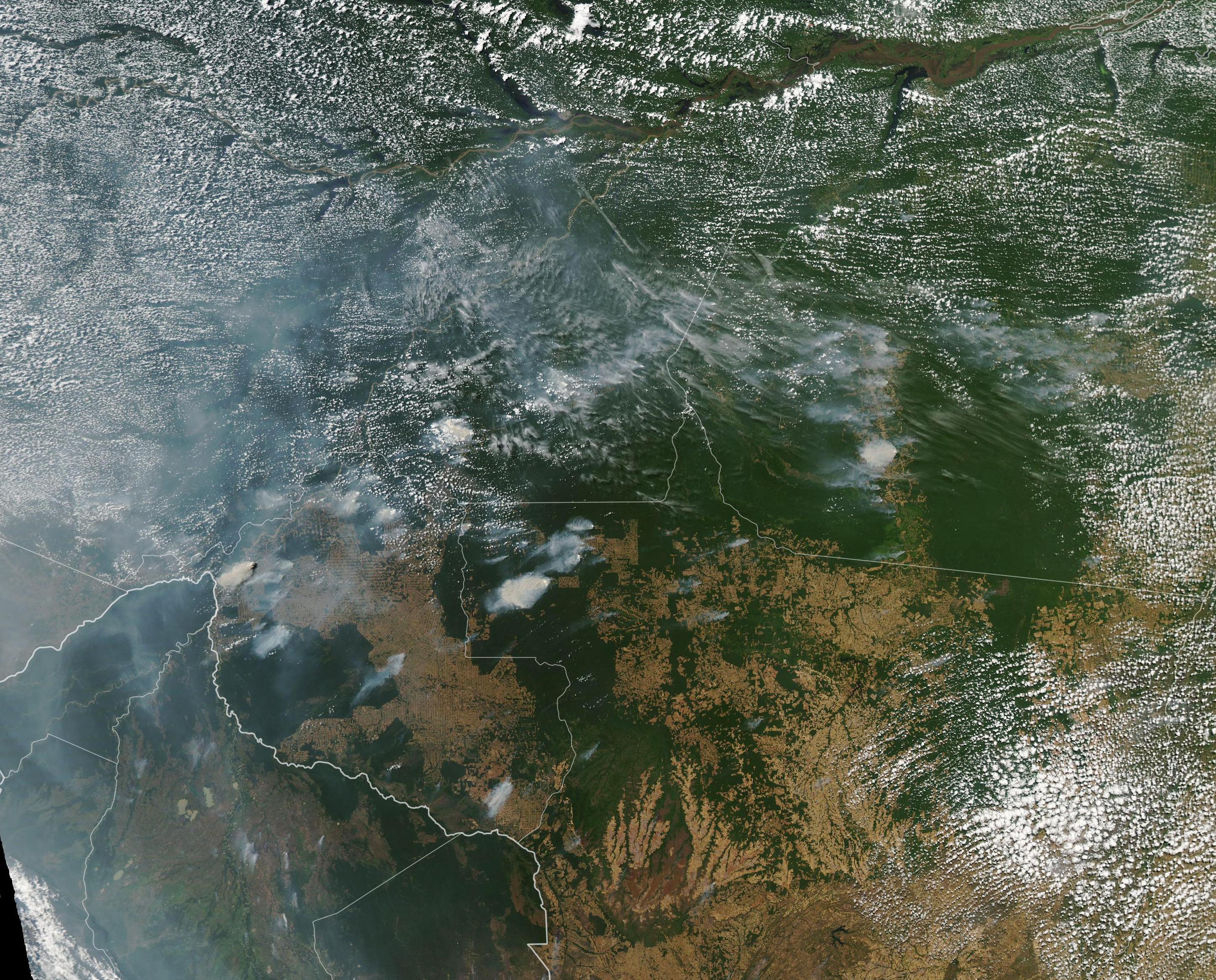 Fuego en la Amazona