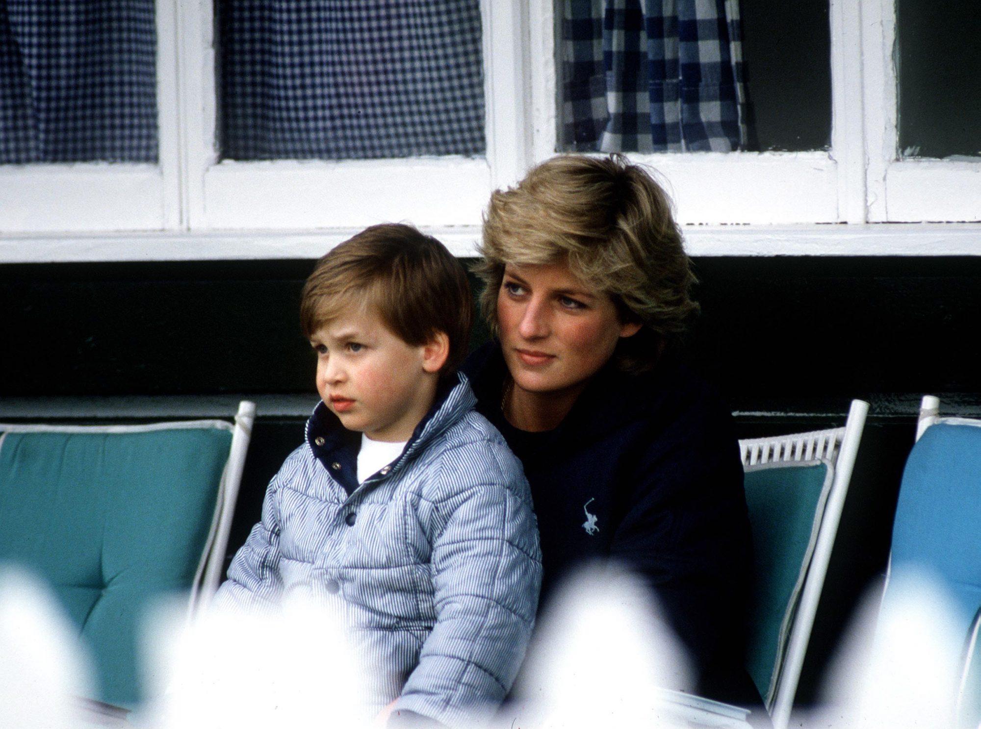 Princesa Diana, Principe WIlliam