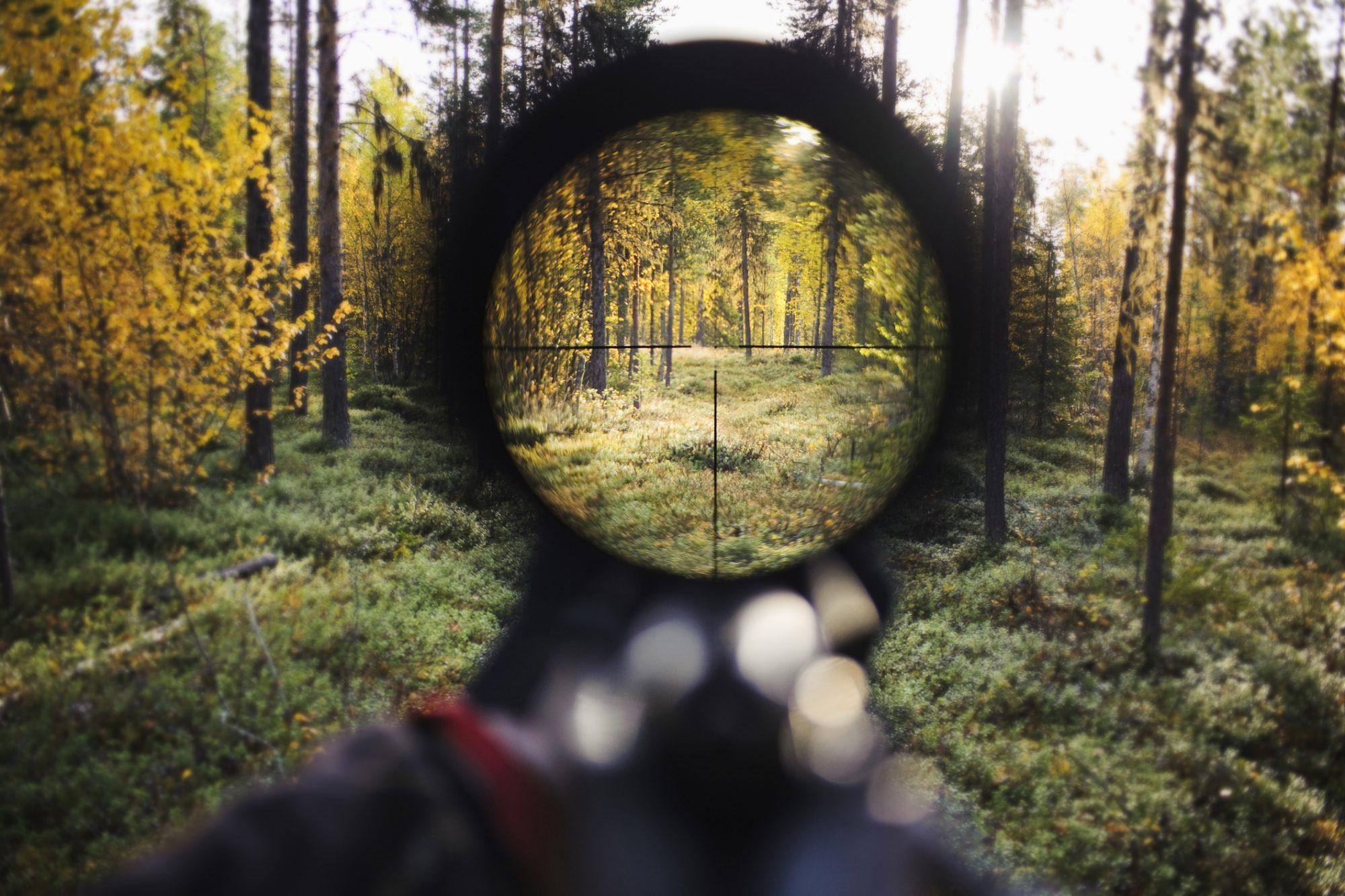 Mirilla rifle cazador