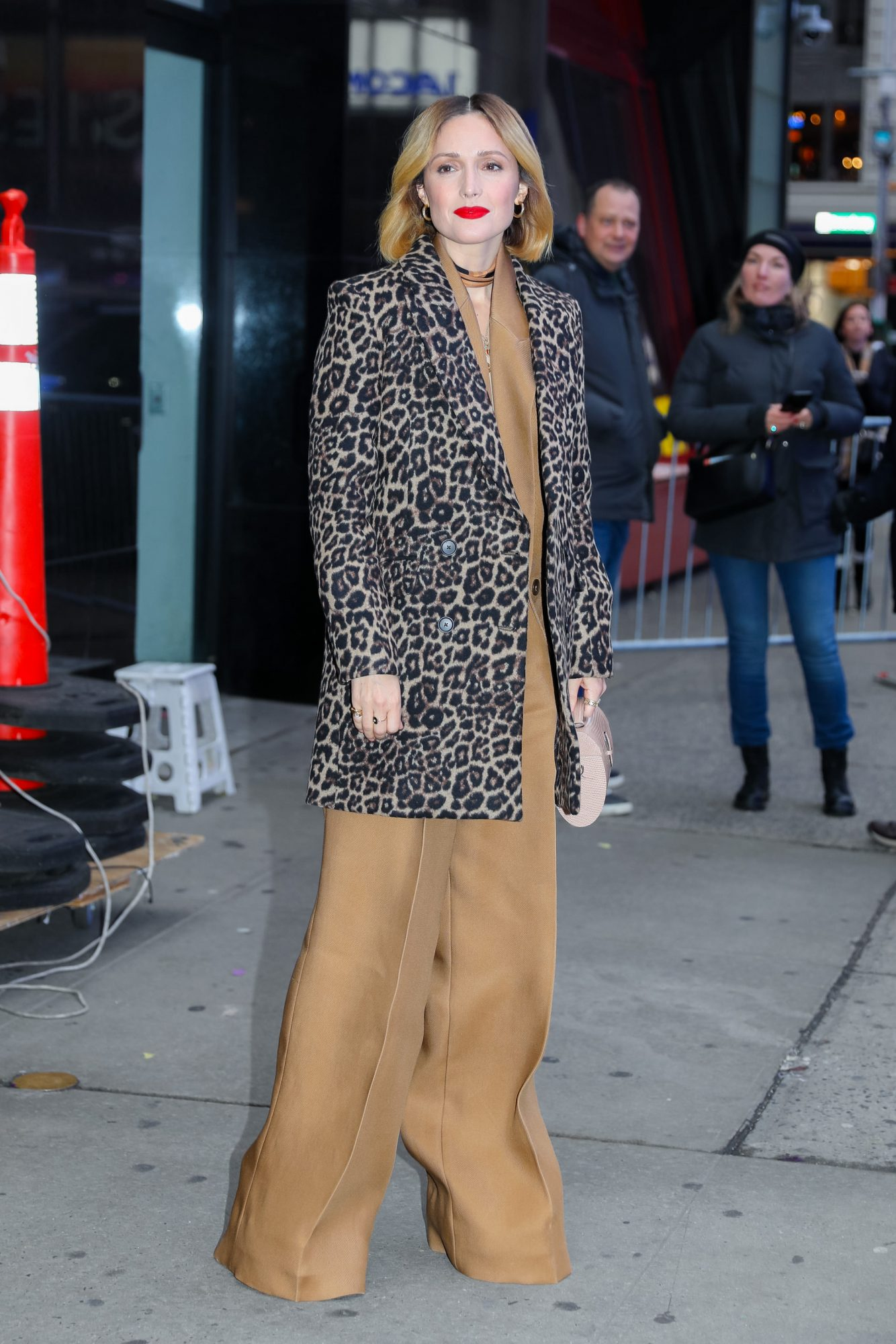 Rose Byrne, looks