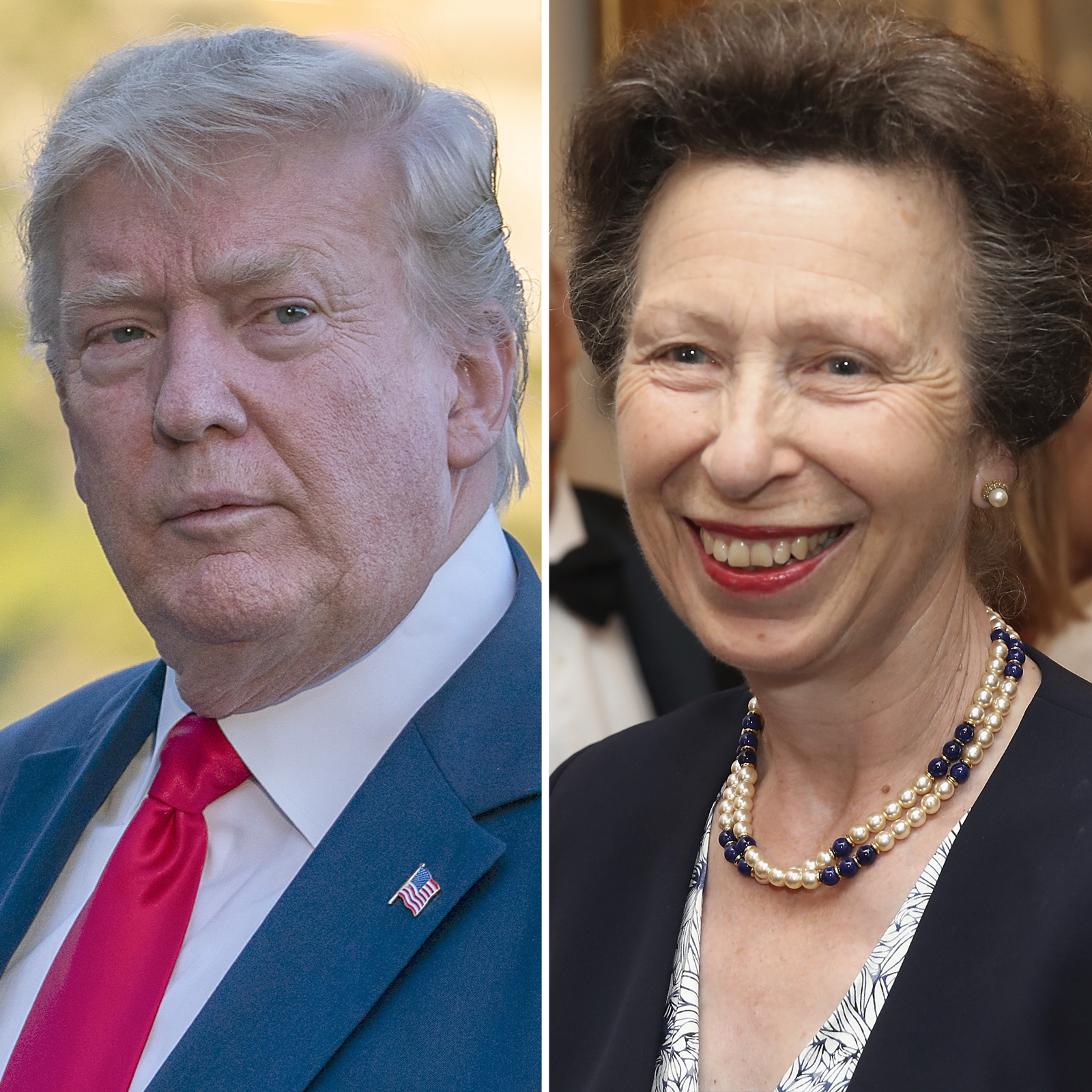 Trump_Princess Anne