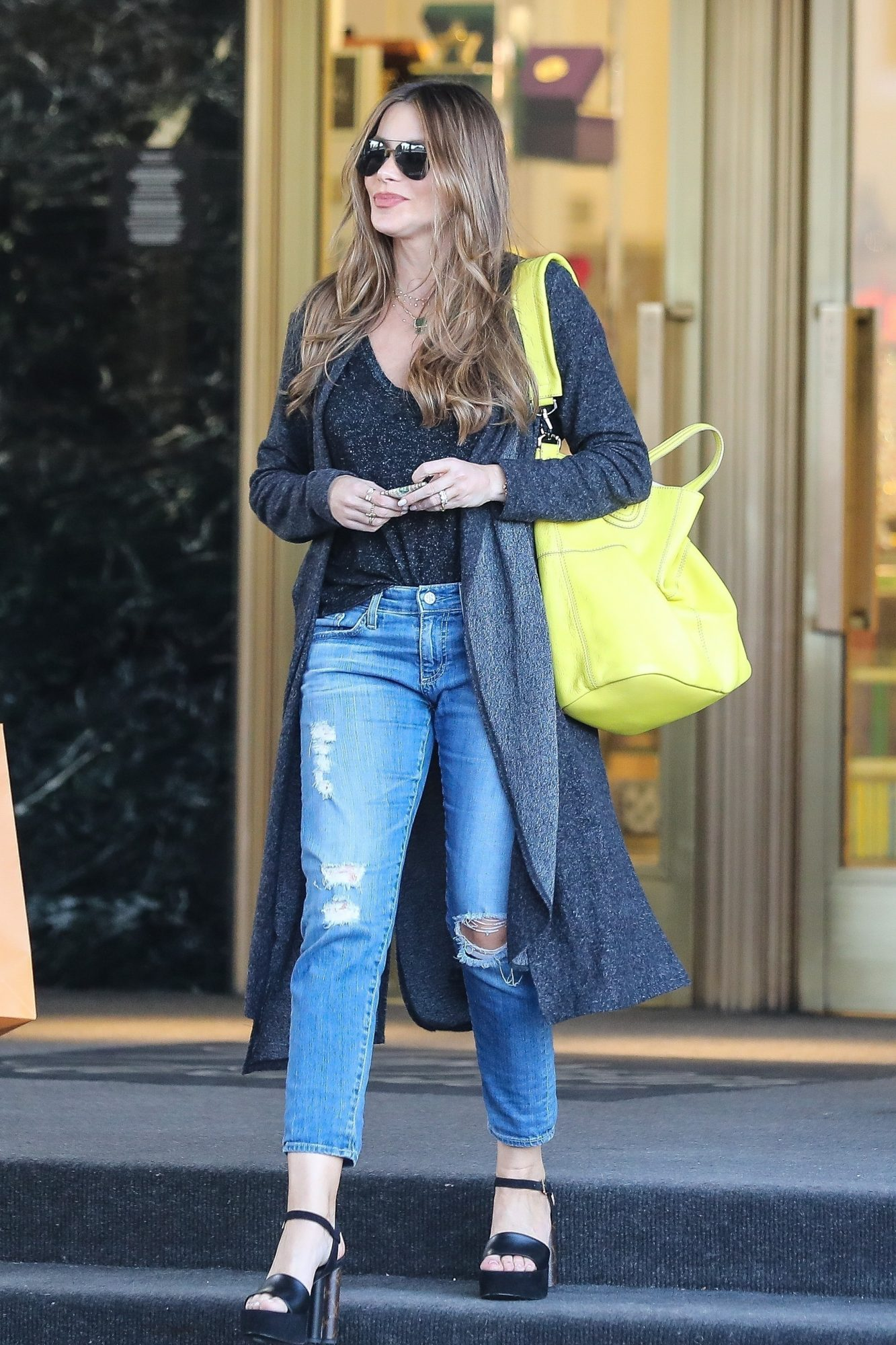 Sofia Vergara, looks