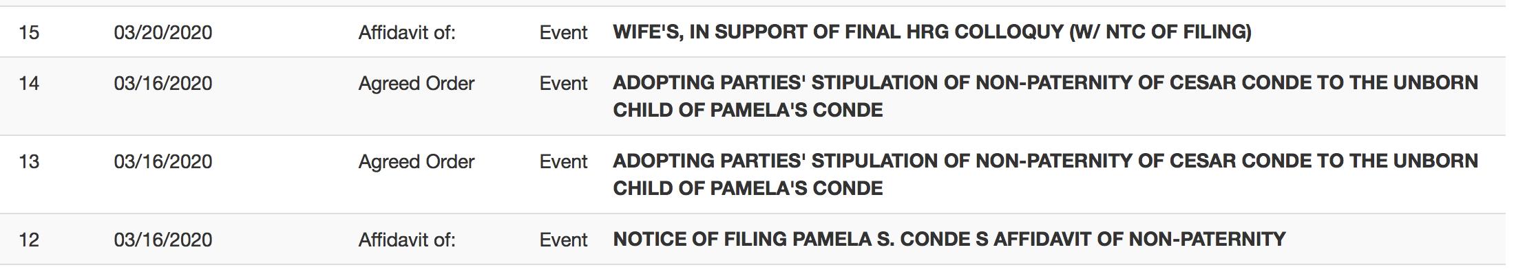 Documentos de la corte Pamela Silva