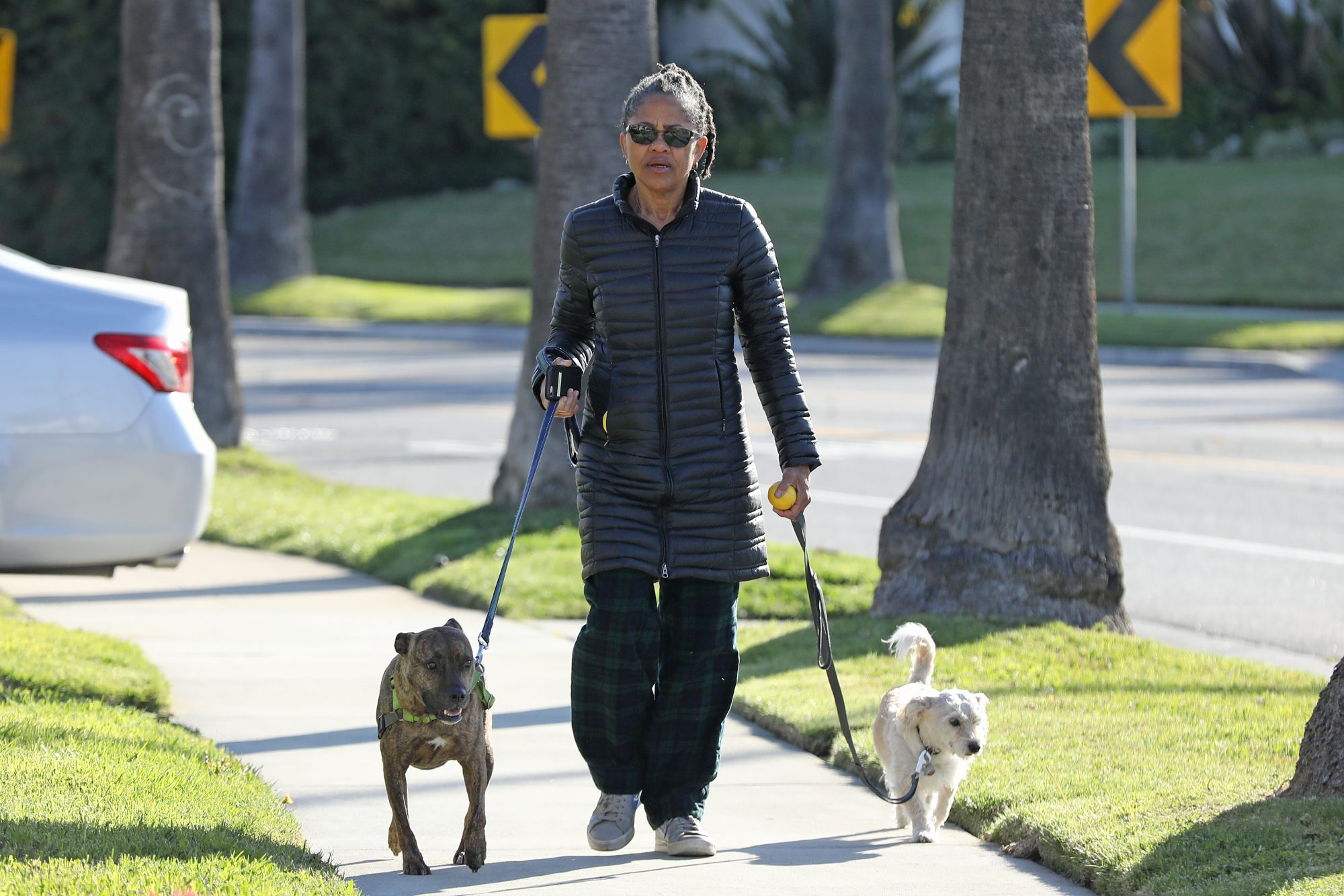 Meghan Markle's mother Doria Ragland is seen leaving isolation to walk her two dogs in her neighborhood after the news broke that her daughter, son-in-law Prince Harry, and their son Archie have relocated from Canada to LA. The social worker and yoga teacher wore a gray coat, flannel trousers and sneakers for the outing as she exercised social distancing amid the global pandemic.