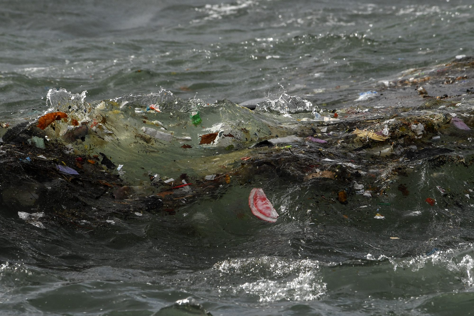 Plastic waste and debris carried by the storm of the last