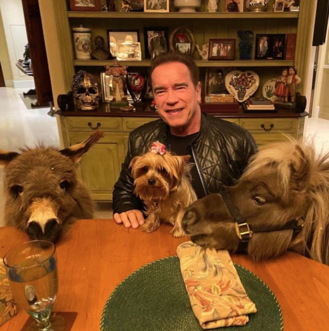 Arnold Schwarzenegger con sus mascotas