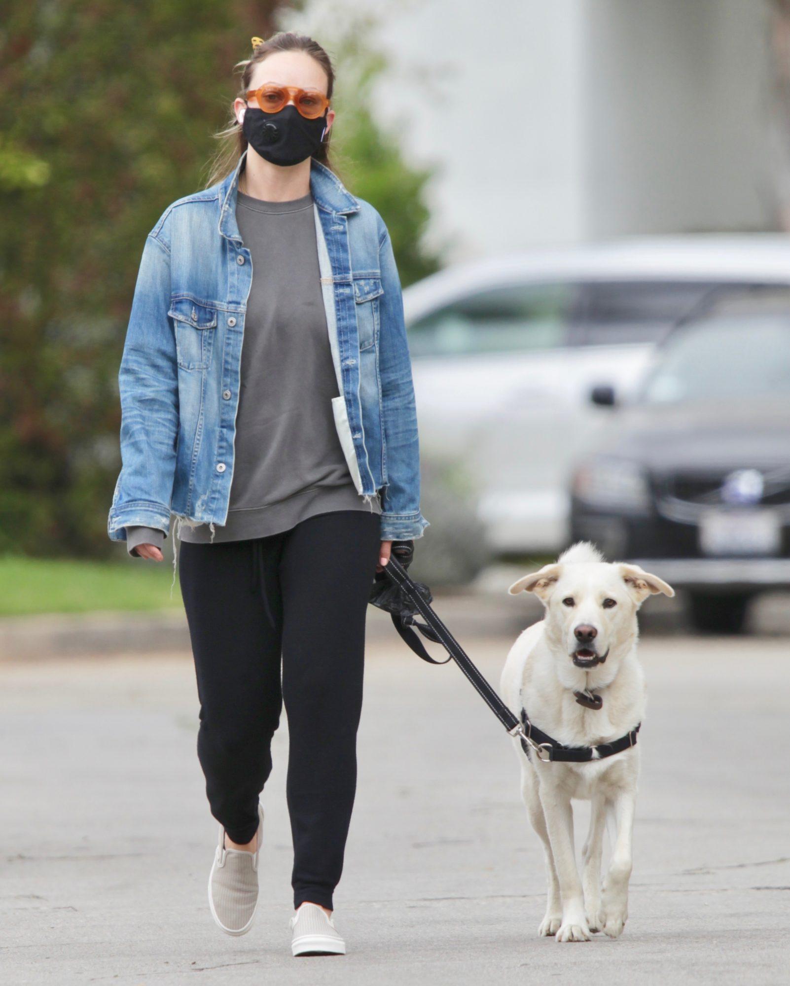 Olivia Wilde, look, cuarentena, perro, caminata, los angeles