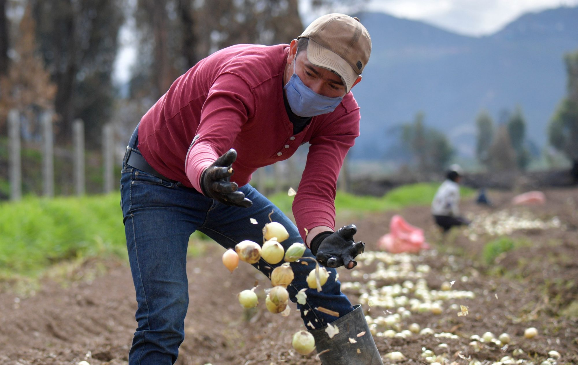 farm worker Coronavirus