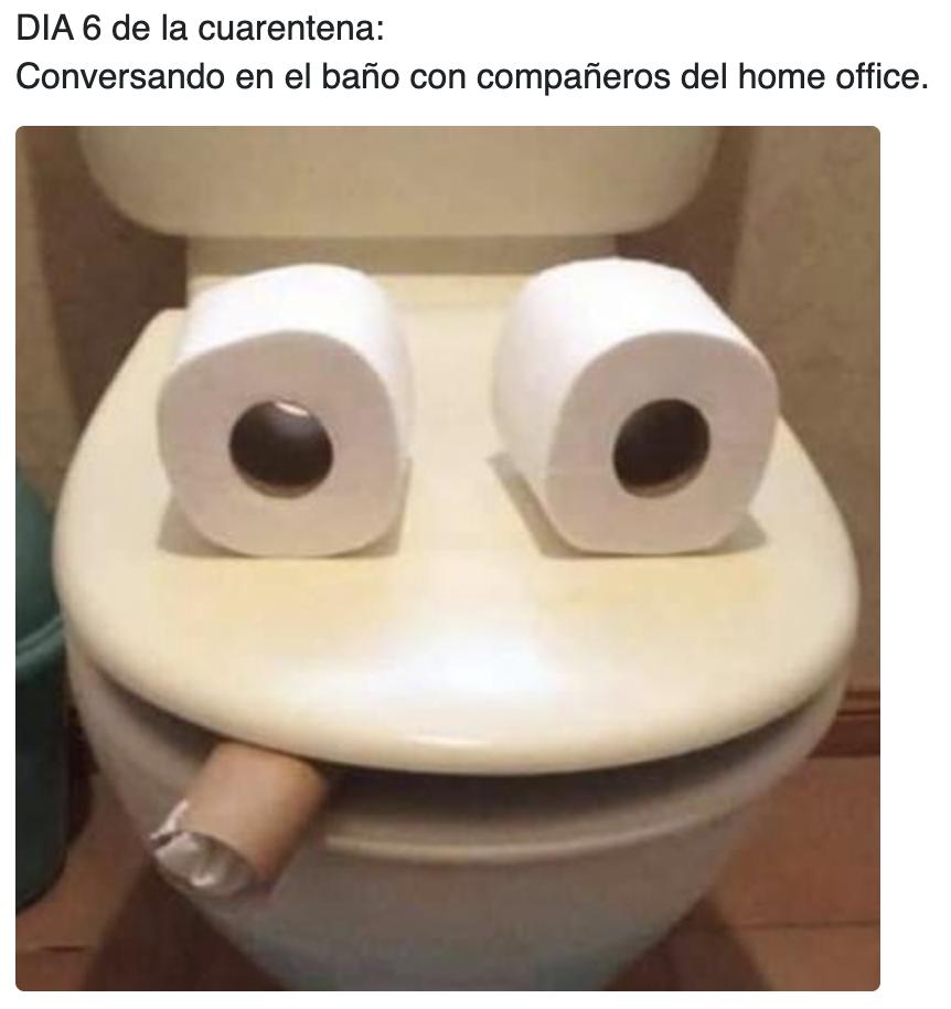 Si te sientes solo, siempre puedes hacer nuevos amigos en el baño.