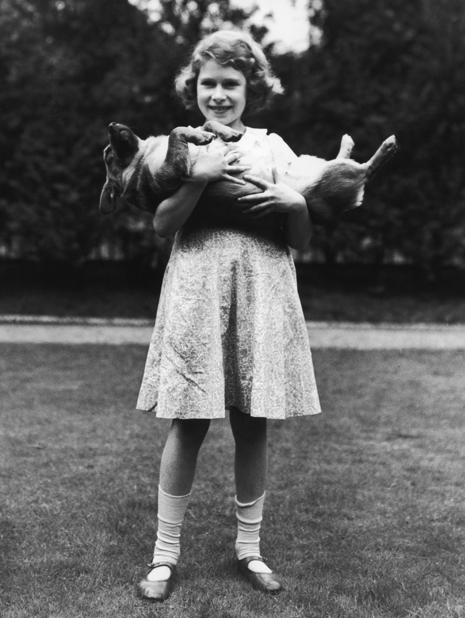 Reina Isabel II con sus perros