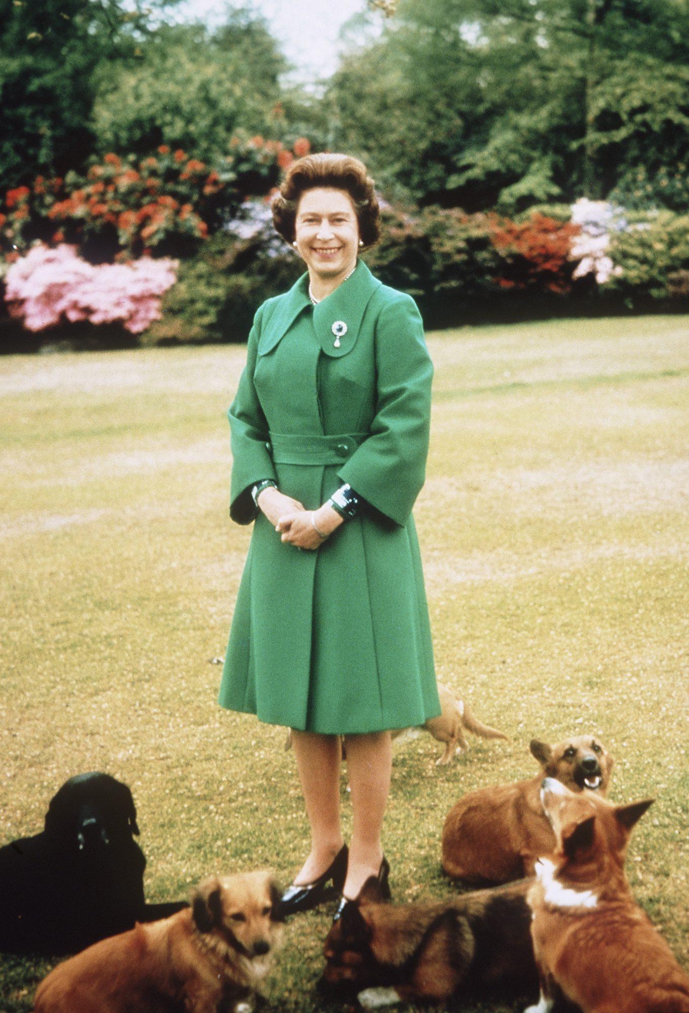 Reina Isabel II, perros